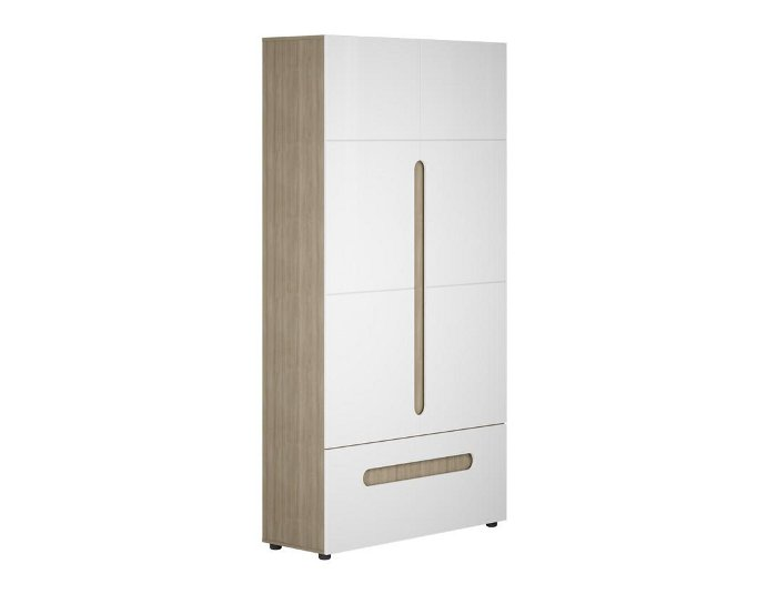 Шкаф двухдверный комбинированный Палермо Юниор