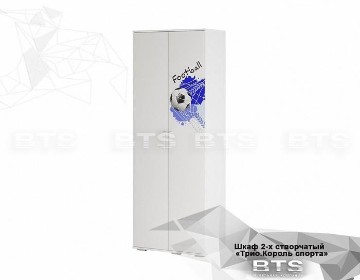 Шкаф двухдверный ШК-09 Король спорта